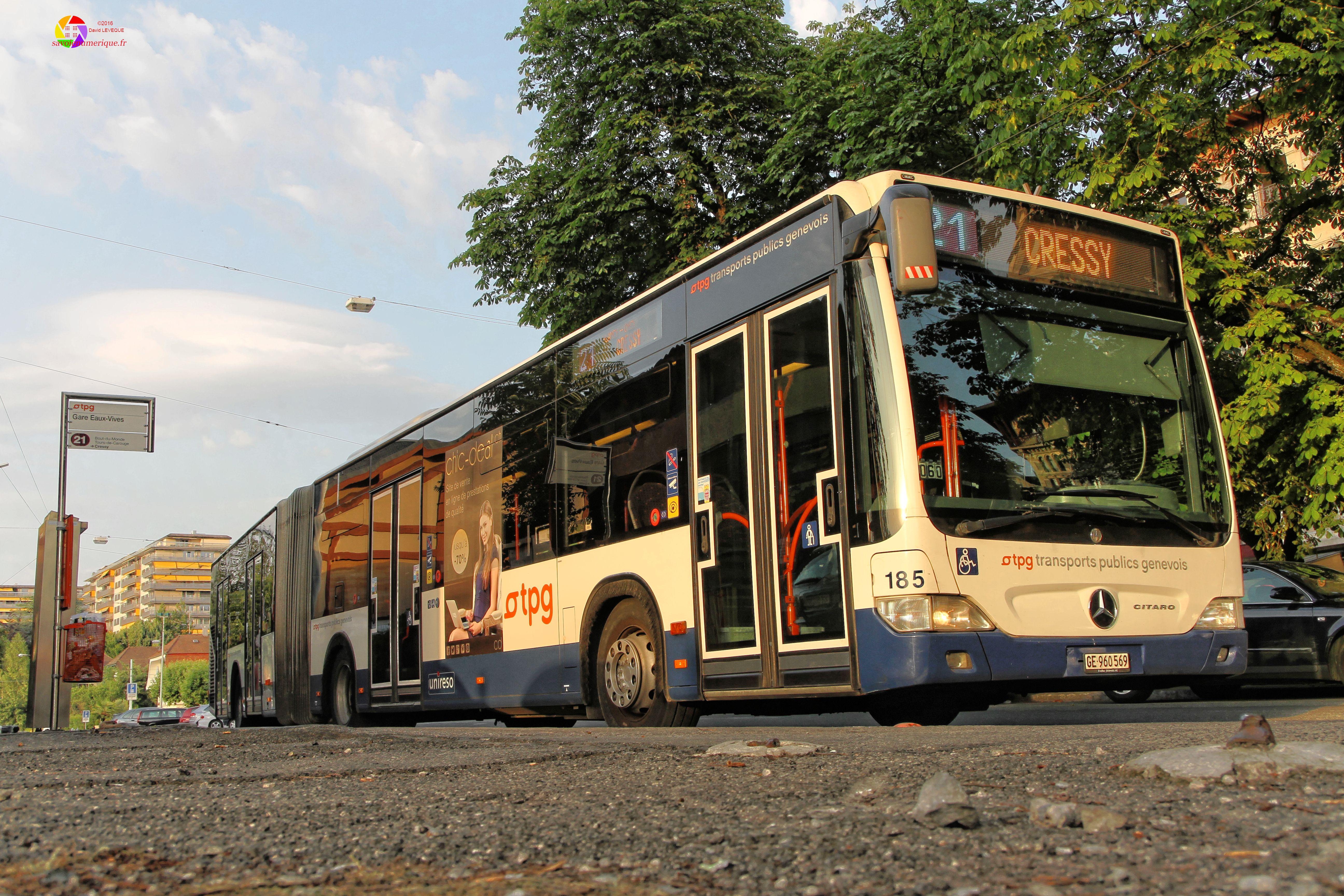 Bus Mercedes Citaro des TPG N°185 au terminus de la ligne 21, Gare des Eaux-Vives, Genève.
